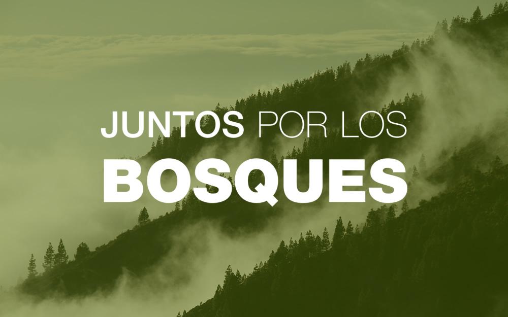 Juntos por los Bosques