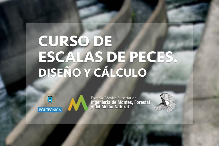 2016101105-curso-escalas-peces